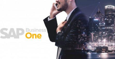 Pengertian dan Penggunaan Software SAP Bagi Perusahaan