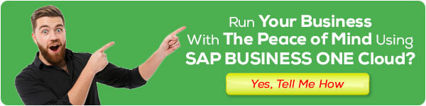 sap business one hana cloud