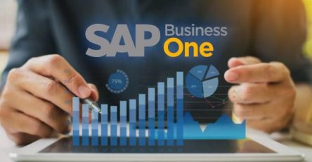 The Advantages of the SAP Accounting Program for Beginners