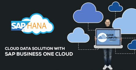 sap business one cloud hana solution