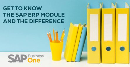 sap business one get to know the sap erp module and the difference