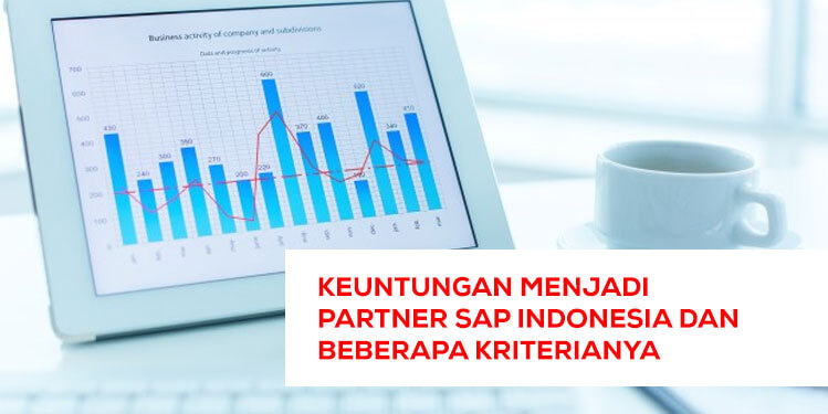 sap partner indonesia