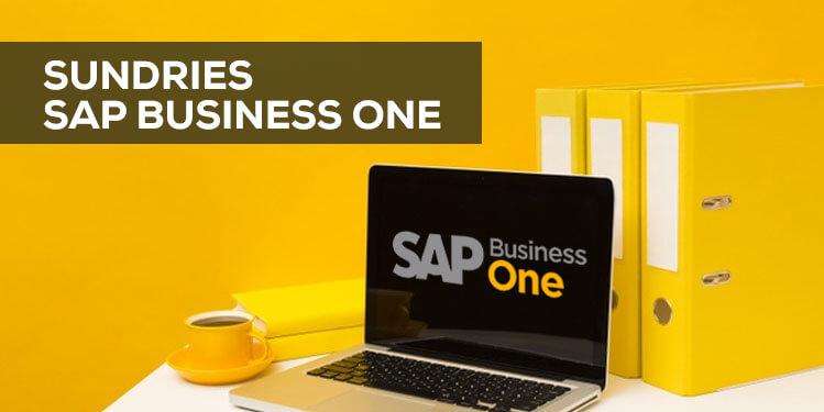 sundries sap business one