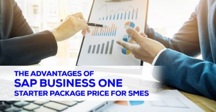 The advantages of SAP Business One Starter Package Price for SMEs