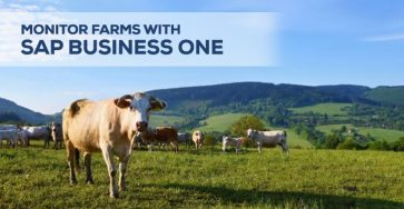 monitor farms with sap business one