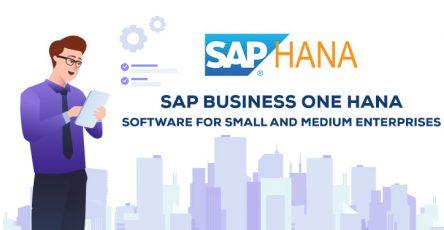 sap-business-one-hana-software-for-small-and-medium-enterprises