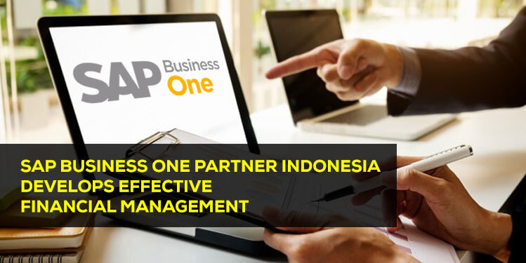 sap business one partner indonesia develops effective financial management