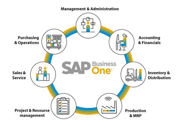 fungsi utama sap business one