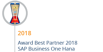 STEM Mendapatkan Award Best SAP Business One Hana Partner 2018