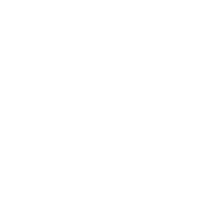 iREAP POS Award Rising Star 2017 by Finance Online