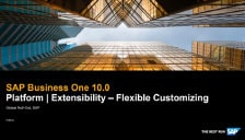 SAP Business One 10 Platform and Extensibility - Flexible Customizing