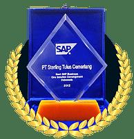 Best Development SAP Business One Partner Award 2013