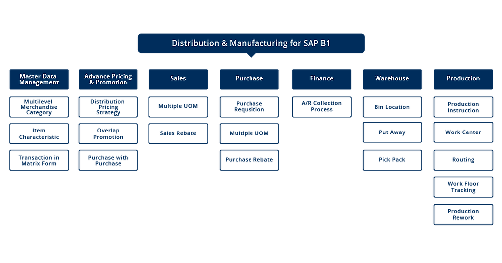 SAP Business One Distribution Scheme